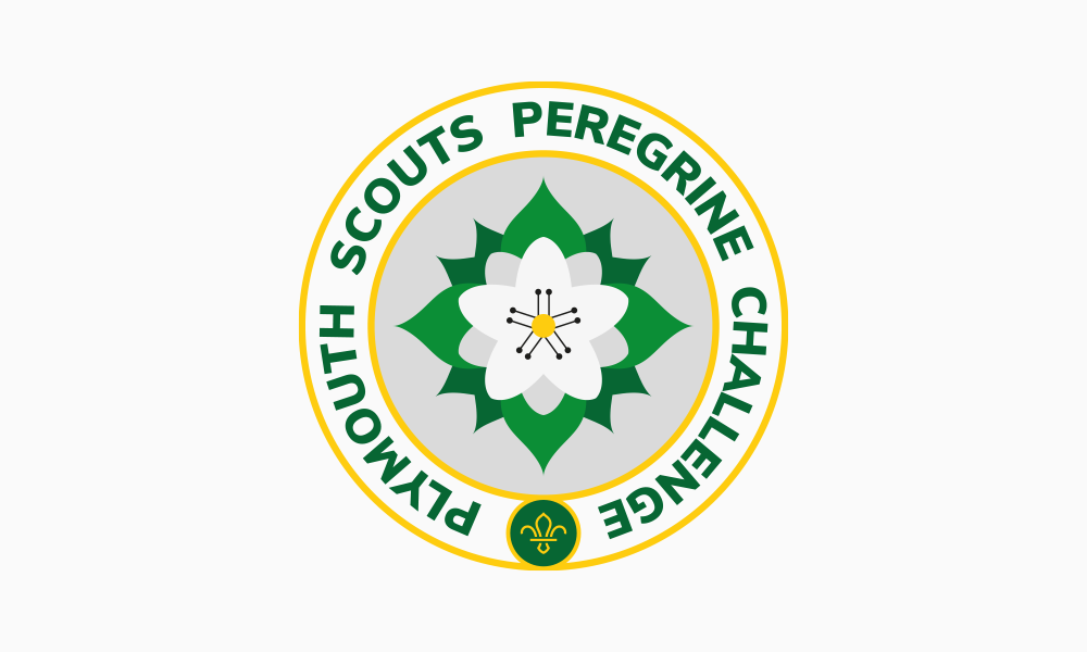 Plymouth scouts peregrine challenge badge design
